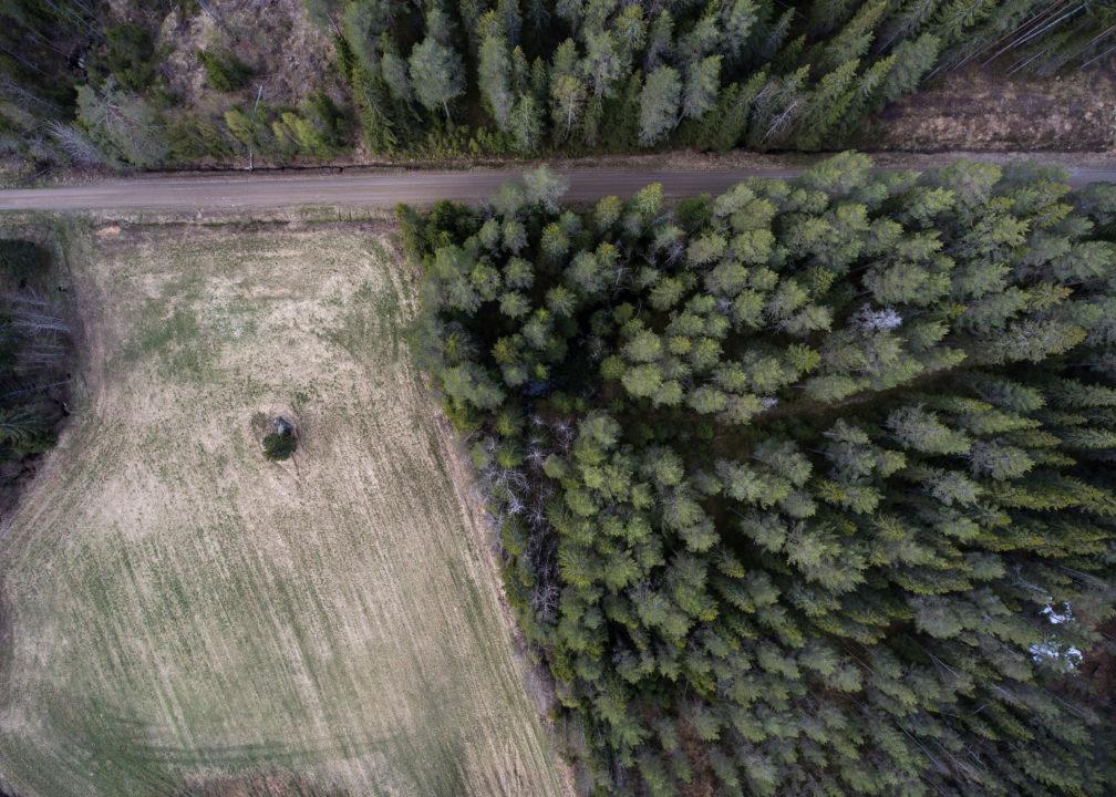 Flygbild, åker och skog.